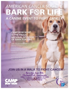 Bark for Life Flyer - CBW Springfield