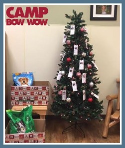 cbw-angel-tree-1